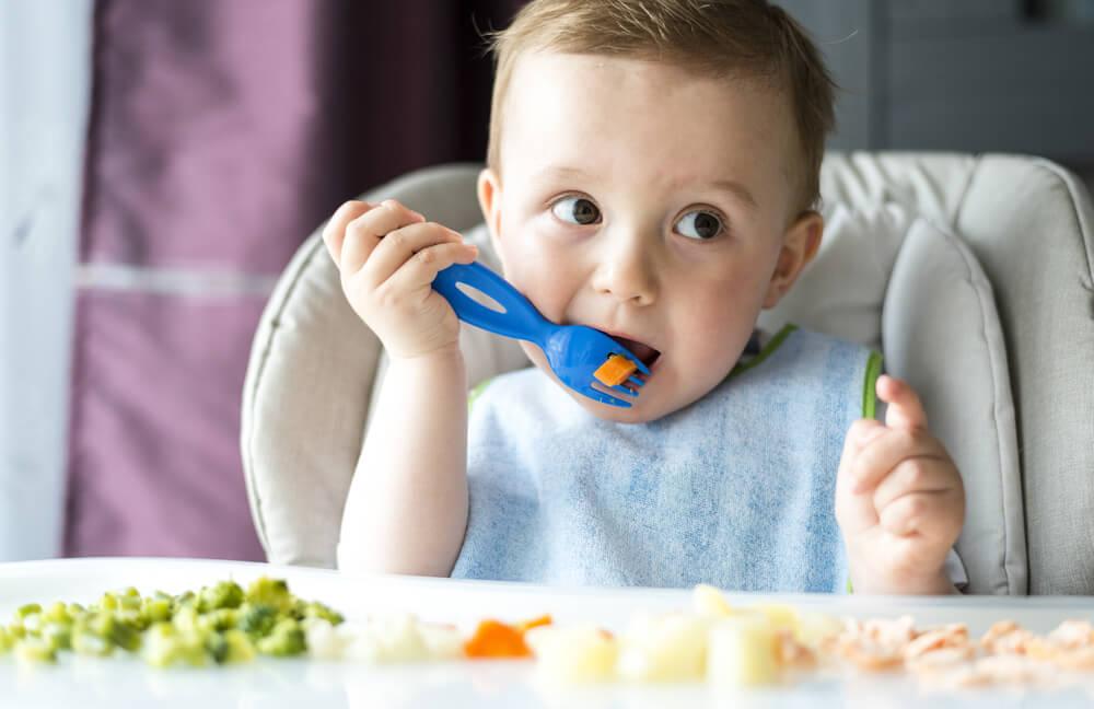 alimentos sólidos bebé